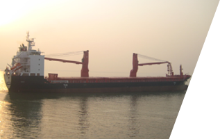 se shipping lines worldwide sea transportation of project cargoes for heavy lifting shipping customers